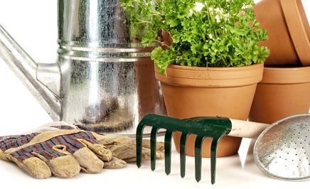 Gartengeräte aus Mettingen – das richtige Werkzeug für Ihren Garten