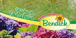 Geschenkgutschein bei Bendick in Mettingen