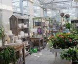 Dekoration für Haus und Garten bei Bendick in Mettingen