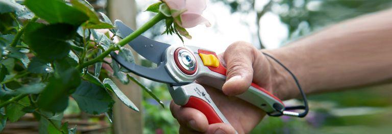 Gartentechnik bei Bendick in Mettingen