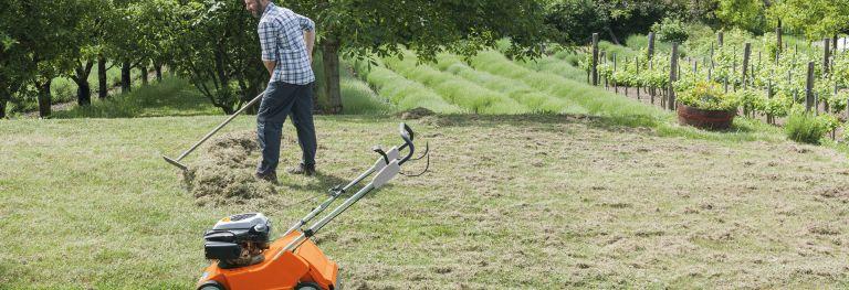 Geräte zur Rasenpflege bei Bendick in Mettingen